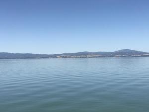 June 30 2017 Oregon  (31) (1)